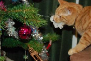 безопасность кошки в новый год