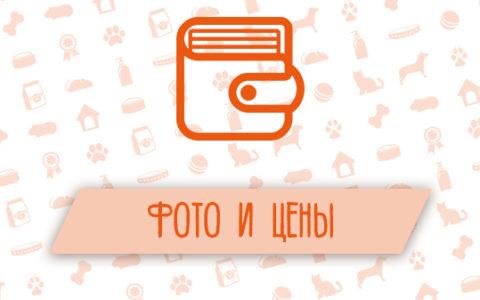 Фото и цены