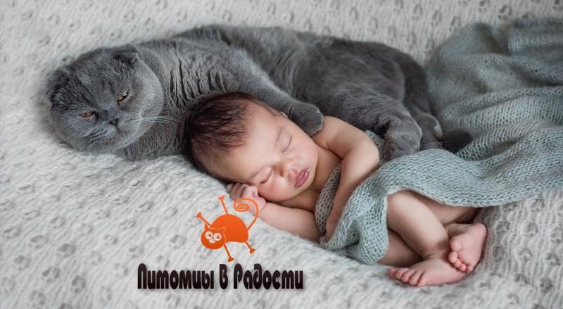 Ребенок и новорожденный