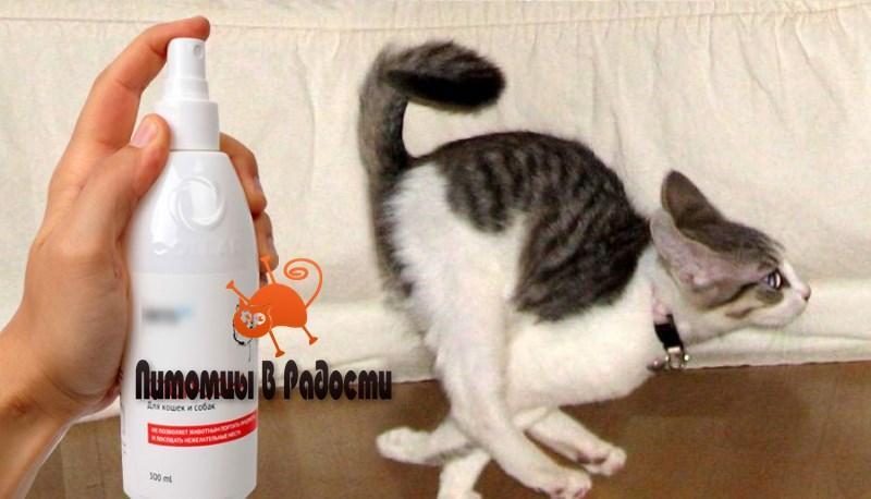 Отпугиватели для кошек