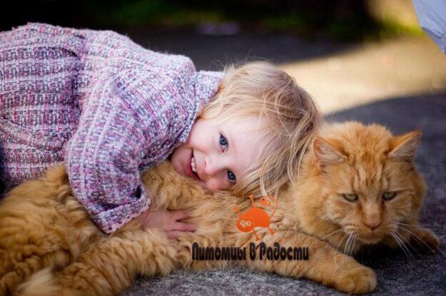 Кошки и дети: друзья или враги?