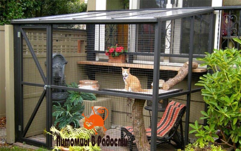 катио для кошки на улице